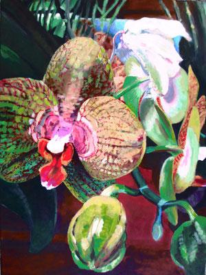 Orchidee; 60x80 cm (linnen)