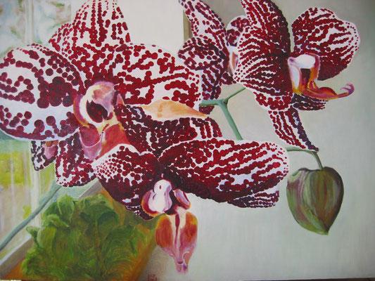 Stippel Orchidee; 80x60 cm (linnen)