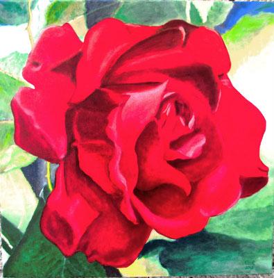 Rode Roos: 50x50 cm (linnen)
