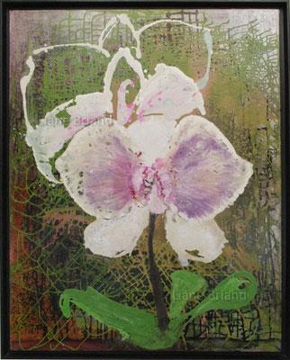 Orquidea - taille du tableau: 81x100cm