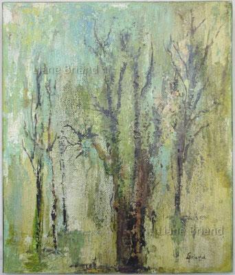 Forêt vierge - taille du tableau: 46x65cm