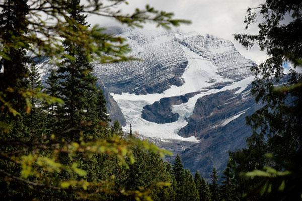 Gletscherfeld beim Mount Robson