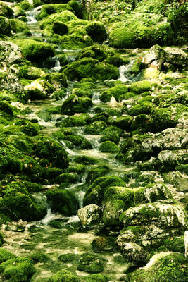 auf dem Weg zum Wasserfall Savica