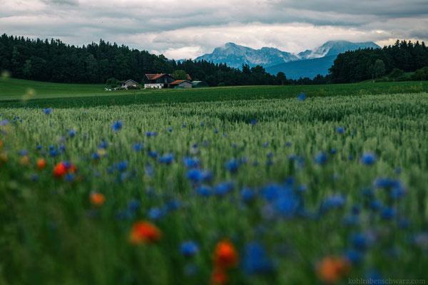 Unterwegs im Alpenland