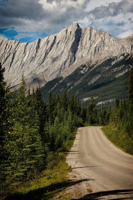 Unterwegs auf der Maligne Lake Road