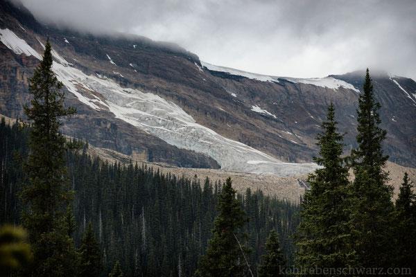 Gletscher im Yoho NP