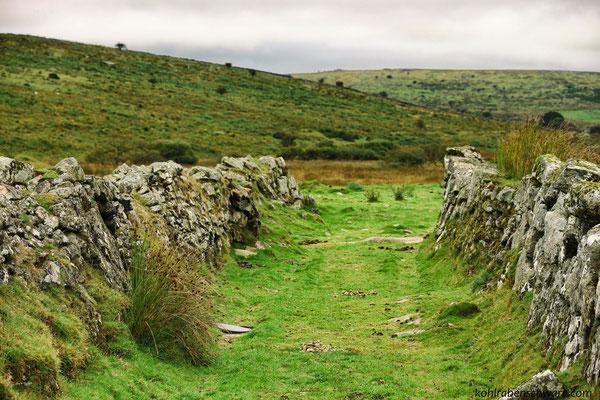 das Bodmin Moor - Steinkreise und Zinnminen
