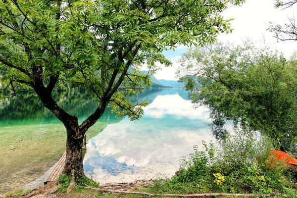 Bohinjski Jezero