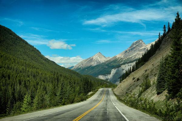 Der Icefield Parkway