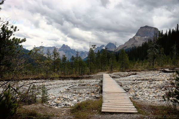 Wanderfpad im Yoho Valley