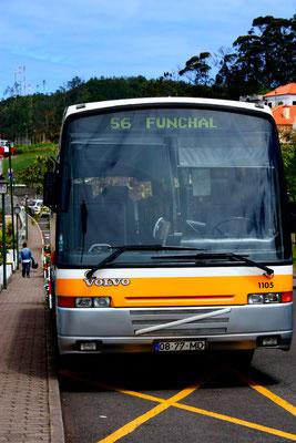 ein Bus!