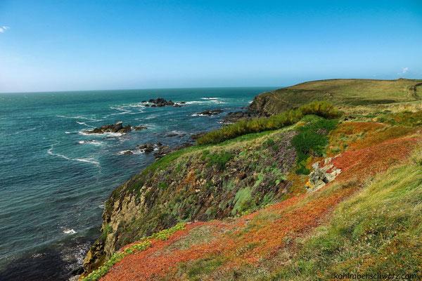 Küstenwanderung um Lizard Point - Englands südlichster Punkt