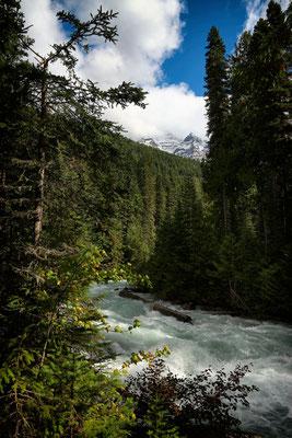 Der Robson River