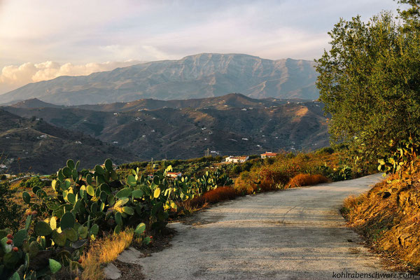 Andalusische Berge