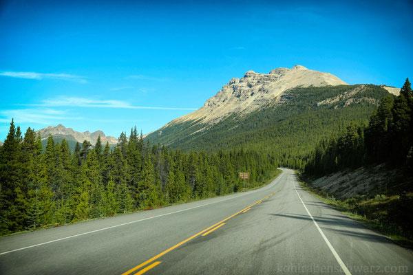 Unterwegs auf dem Icefield Parkway