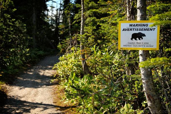 Bärenwarnung im Mt. Revelstoke Nationalpark