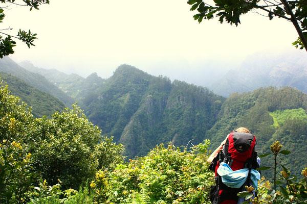 Blick aufs Gebirge