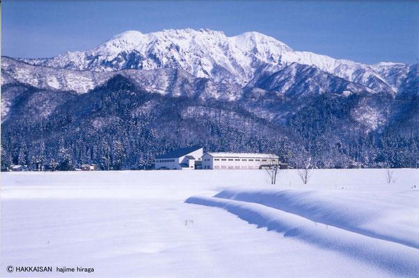 雪の中の蔵元 雪は自然の恵み