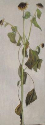 Sonnenblume im Herbst, 2012 *  80 x 30 cm, Acryl auf Molino, verk.