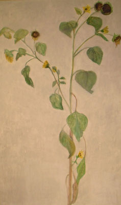 Sonnenblume, 2012 *  100 x 70 cm, Acryl auf Molino,    200,-