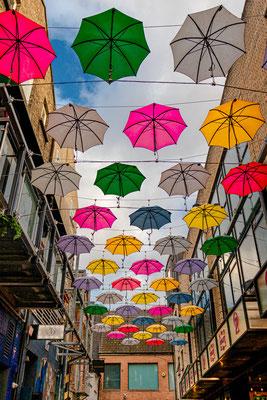 The Umbrellas - Annies Lane, Dublin