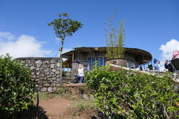 Malino Highlands - Teeplantagen - Makassar - Sulawesi - travelumdiewelt.de