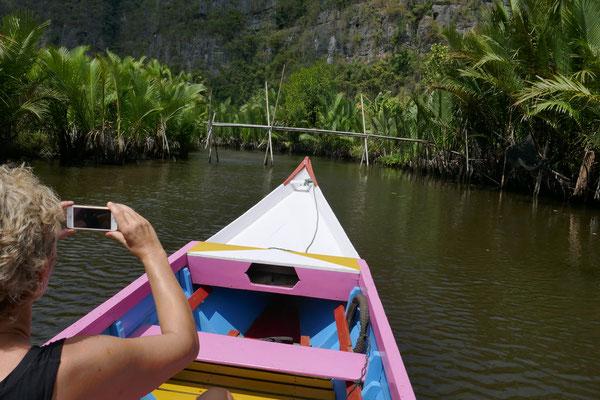 Dschungel - Rammang Rammang - Sulawesi - travelumdiewelt.de