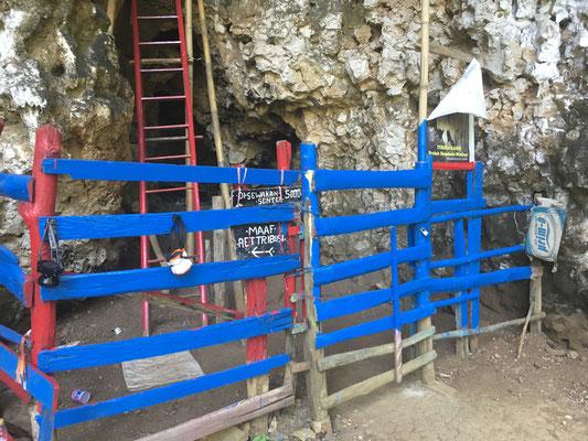 Fire Flies Cave - Süd Sulawesi - Indonesien - travelumdiewelt.de