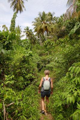 Dschungeltour - Togian Islands - Sulawesi - Indonesien - travelumdiewelt.de