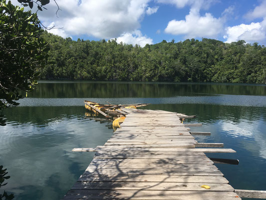 Jellyfish Lake - Reiseblog - Sulawesi - Indonesien - travelumdiewelt.de