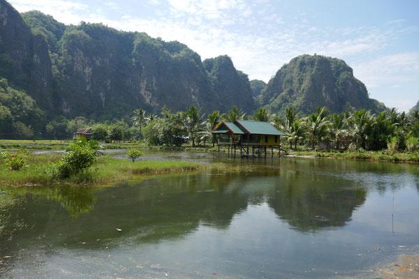 Karstfelsen - Reisfelder - Geheimtipp - Süd Sulawesi - travelumdiewelt.de