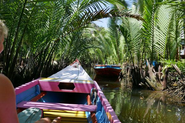 Dschungel - Südsulawesi - Makassar - travelumdiewelt.de