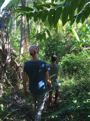 Reisetipps - Dschungeltour - Togian Islands - PokiPoki - travelumdiewelt.de