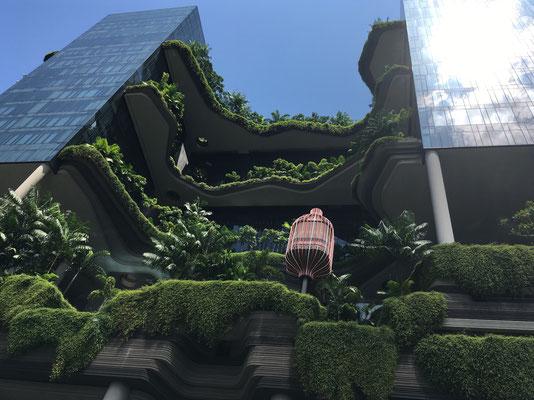 Wolkenkratzer - grüne Hochhäuser - planted skycrapers - Singapur -travelumdiewelt.com