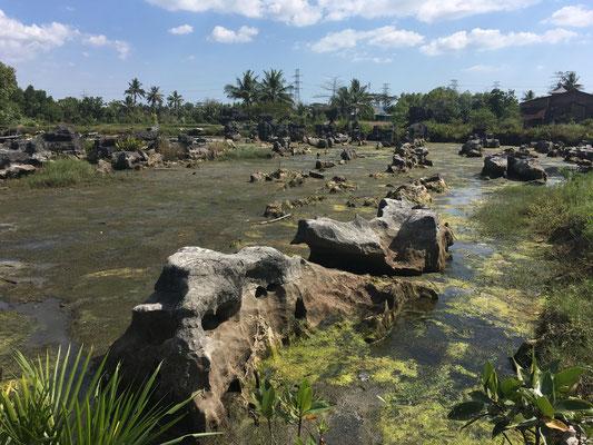 Reisetipps - Ausflug - Süd Sulawesi - travelumdiewelt.de