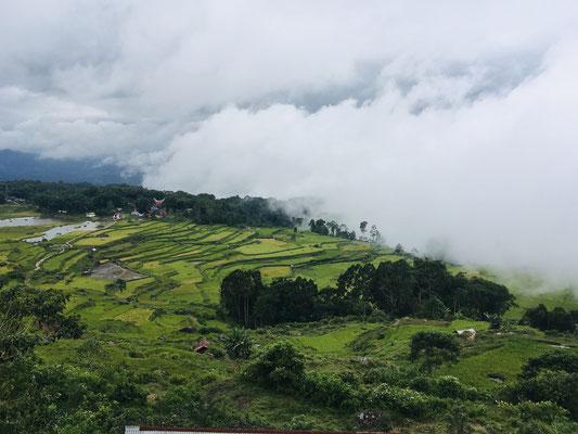 Sulawesi - Rantepao - Tana Toraja - Ausflüge - travelumdiewelt.com