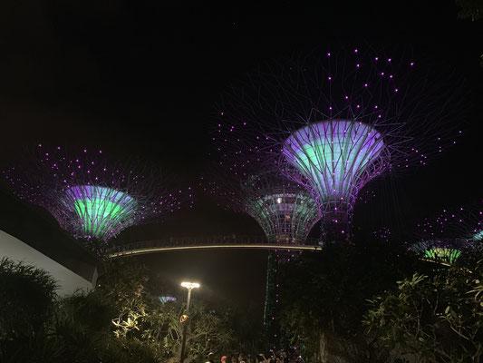 Supertrees - Rapssody - Singapur - travelumdiewelt.com