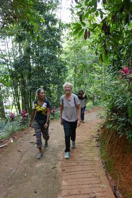 Reisetipps - Sulawesi - Indonesien - travelumdiewelt.de