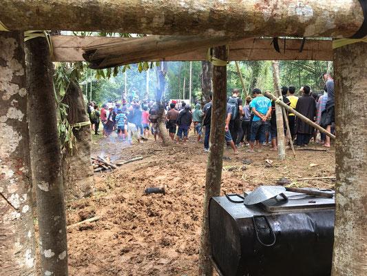 Zeremonie - Büffel Schlachtung - Tana Toraja - Sulawesi - travelumdiewelt.de