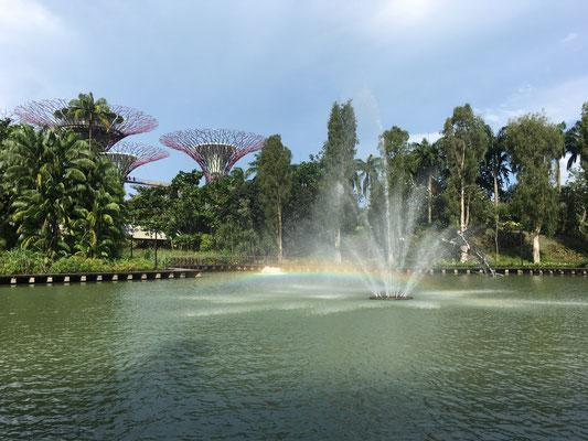 Supertrees - Garten der Zukunft - Singapur - travelumdiewelt.com