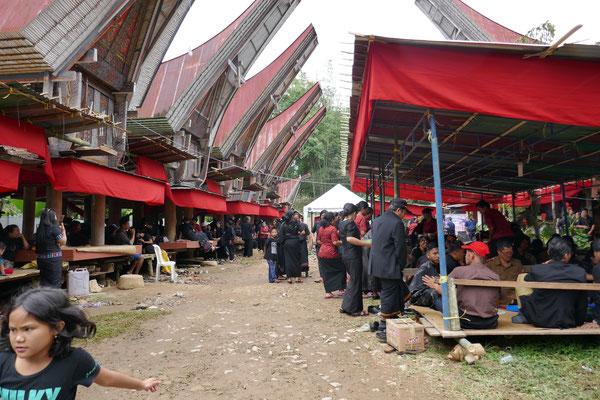 Zeremonie - Rantepao - Sulawesi - tavelumdiewelt.de