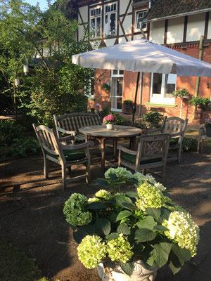 Frühsonne im Garten