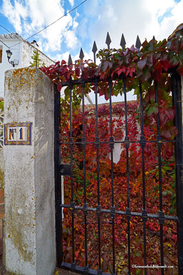 Comares; Herbst in Comares