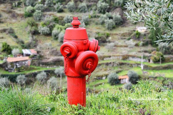Es gibt Ausreichend Hydranten für den Fall der Fälle