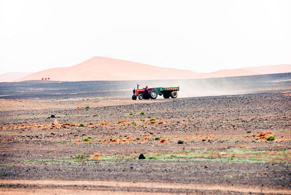 Marokko; Wüste; Traktor