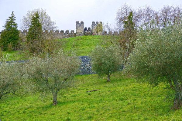 Blick zur Stadtmauer