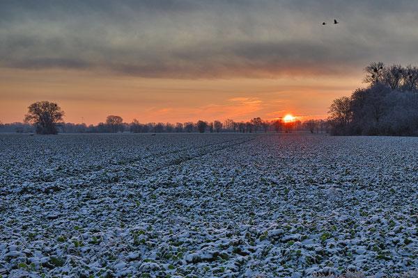 www.lockemann-fotografie.de Sonnenaufgang