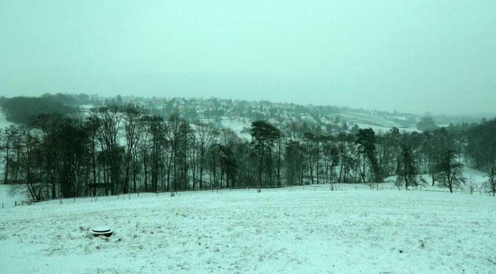 Blick vom Ferienhaus über die Wiesen in Richtung der Obst- und Weinanbaugebiete um Pesterwitz - Winter