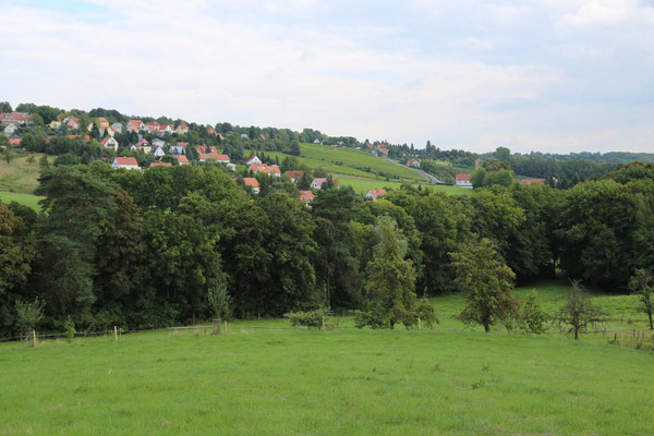 Blick vom Ferienhaus über die Wiesen in Richtung der Obst- und Weinanbaugebiete um Pesterwitz - Sommer