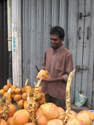 King coconut Verkäufer